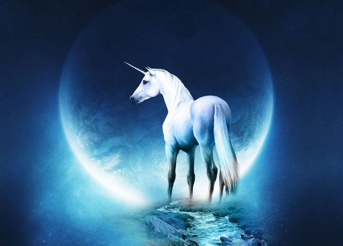 Fantasy-blue-Moon-unicorns-moonlight-digital-art_1920x1080